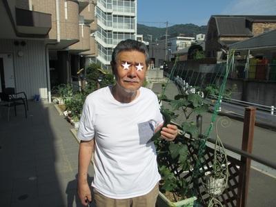 きゅうり 収穫 .jpg